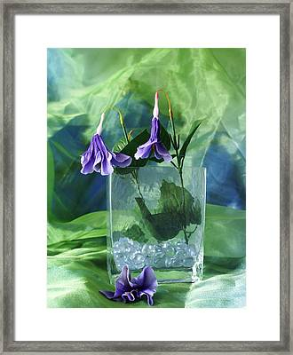 Purple Flowers Framed Print by Florene Welebny