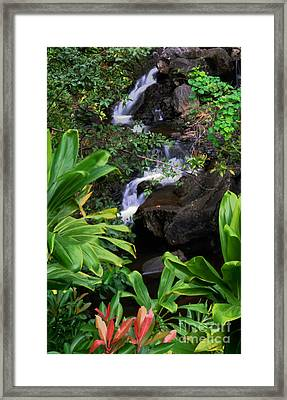 Tropical Setting Framed Print by Frank Wicker