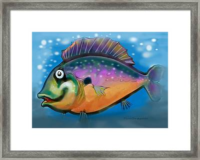 Rainbow Fish Framed Print by Kevin Middleton