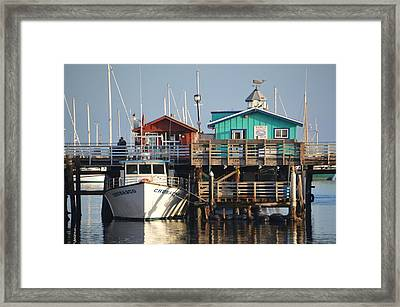 Randys Whale Watching And Fishing Trips Framed Print by Barbara Snyder
