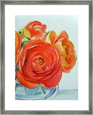 Ranunculus Framed Print by Irina Sztukowski