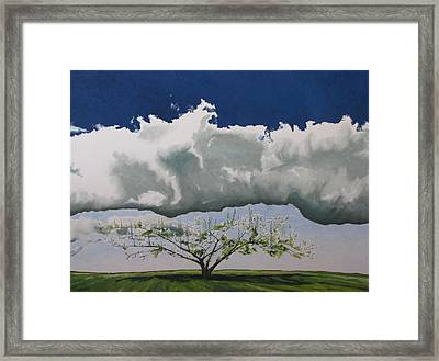 Reaching For The Sky Framed Print by Francois Fournier