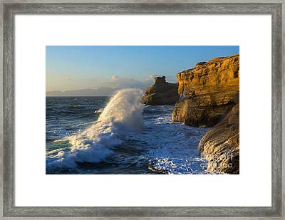 Reaching For The Top Framed Print by Mike Dawson