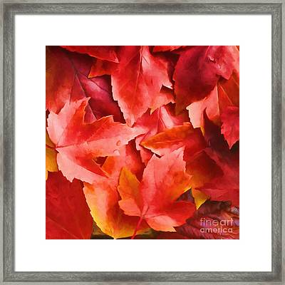 Red Leaves Framed Print by Veikko Suikkanen