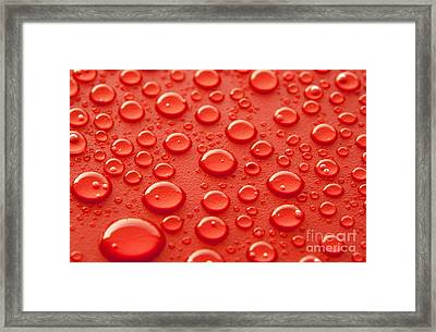 Red Water Drops Framed Print by Blink Images