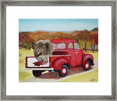 Ridin' With Razorbacks 2 Framed Print by Belinda Nagy