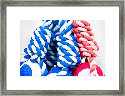 Rope Toys Framed Print by Tom Gowanlock