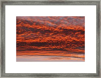 Rosy Sky Framed Print by Michal Boubin