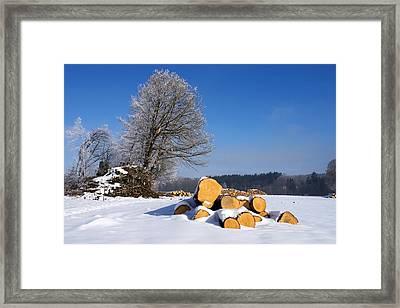 Round Wood Framed Print by Uwe Gernhoefer