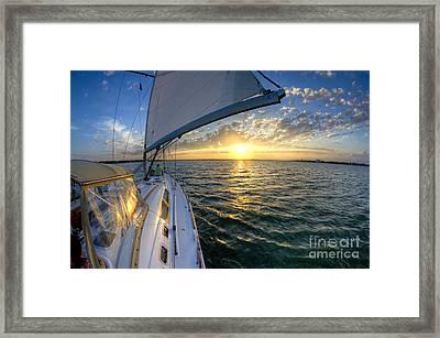 Sailing Sunset Charleston Sc Beneteau 49 Framed Print by Dustin K Ryan