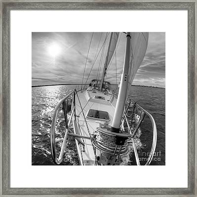 Sailing Yacht Fate Beneteau 49 Black And White Framed Print by Dustin K Ryan