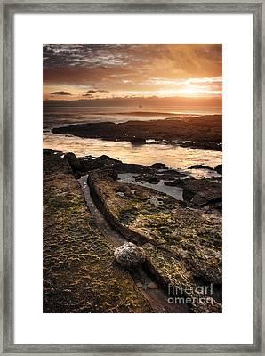 Seashore Sunset Framed Print by Carlos Caetano