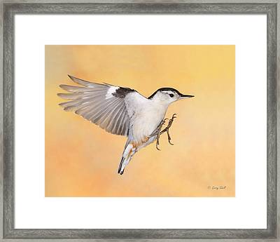 See These Claws Framed Print by Gerry Sibell