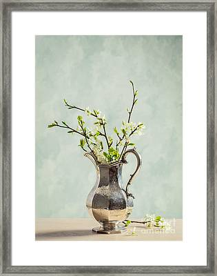 Spring Blossom Framed Print by Amanda And Christopher Elwell