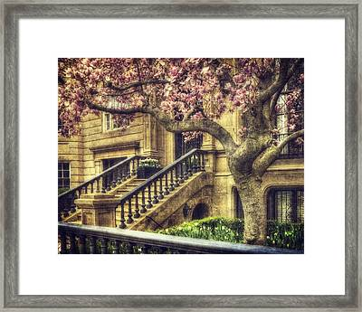 Spring In Boston Framed Print by Joann Vitali