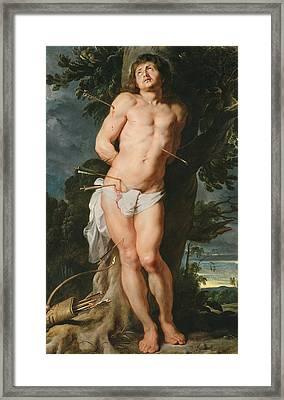 St. Sebastian  Framed Print by Peter Paul Rubens