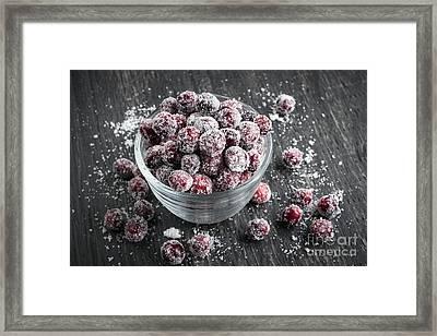 Sugared Cranberries Framed Print by Elena Elisseeva