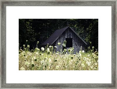 Summer Barn Framed Print by Rob Travis
