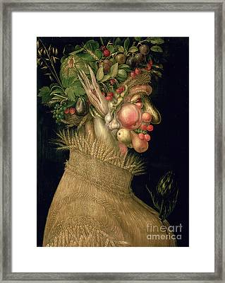 Summer Framed Print by Giuseppe Arcimboldo