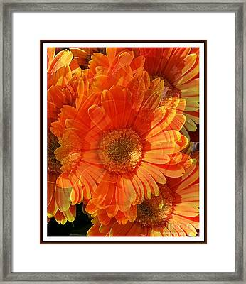 Sunburst Framed Print by Chalet Roome-Rigdon