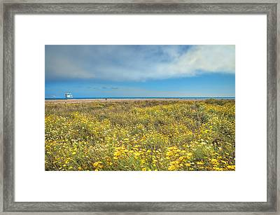 Sunny Side Up Framed Print by Lynn Bauer