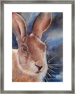 Surprise Framed Print by Patricia Pushaw