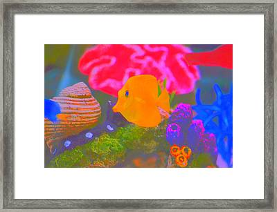 Tang Framed Print by Ronald T Williams