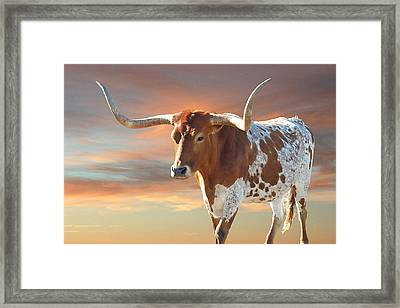 Texas Icon Framed Print by Robert Anschutz