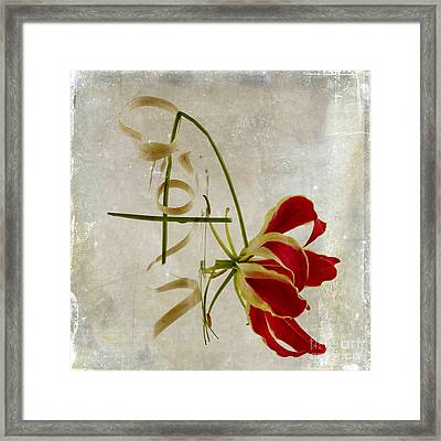 textured Gloriosa Lily. Framed Print by Bernard Jaubert