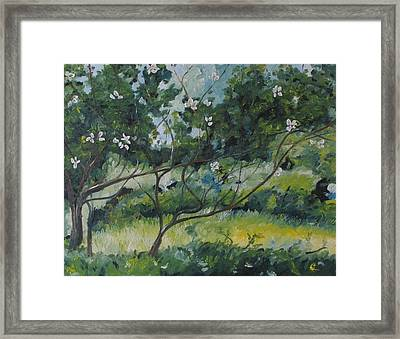 The Apple Tree With Long Branches Framed Print by Francois Fournier