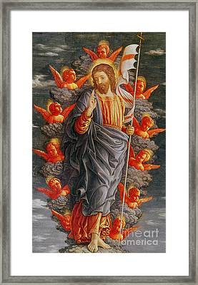 The Ascension Framed Print by Andrea Mantegna