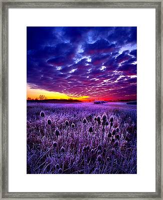 The Audience Framed Print by Phil Koch