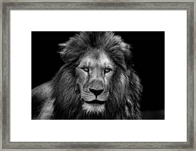 The Epitome Of Male Framed Print by Mountain Dreams