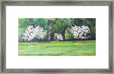 The Flowering Apple Trees Framed Print by Francois Fournier