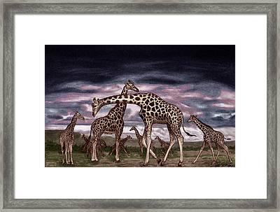 The Herd Framed Print by Peter Piatt