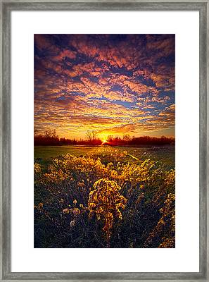 The Love That Lights My Way Framed Print by Phil Koch