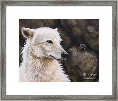 The Mouse Framed Print by Sandi Baker