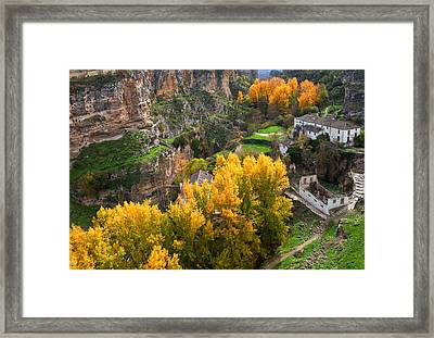 The Old Flour Mill And Elm Trees Framed Print by Panoramic Images