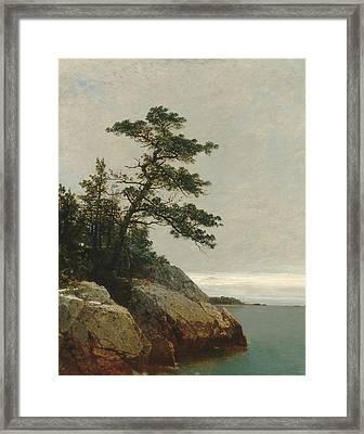 The Old Pine Darien Connecticut Framed Print by John Frederick Kensett