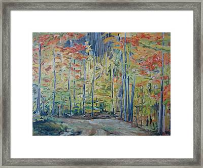The Orange Maple Trees Framed Print by Francois Fournier