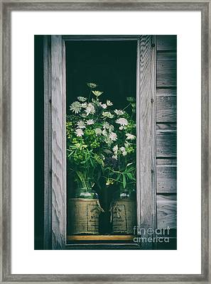 The Shed Framed Print by Tim Gainey