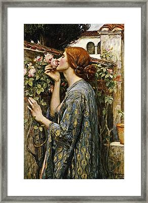 The Soul Of The Rose Framed Print by John William Waterhouse