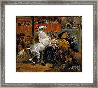 The Start Of The Race Of The Riderless Horses Framed Print by Celestial Images