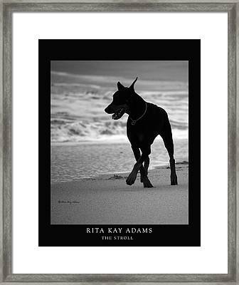 The Stroll Framed Print by Rita Kay Adams