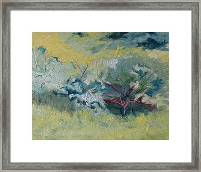 Through The Branches Framed Print by Francois Fournier