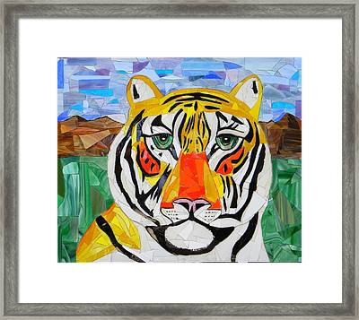 Tiger Framed Print by Charles McDonell