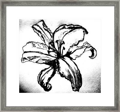 Tigerlily  Framed Print by Marsha Heiken