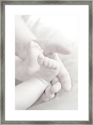 Tiny Feet Framed Print by Sebastian Musial