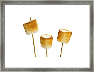 Toasted Marshmallows Framed Print by Elena Elisseeva