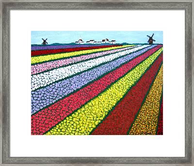 Tulip Fields Framed Print by Frederic Kohli